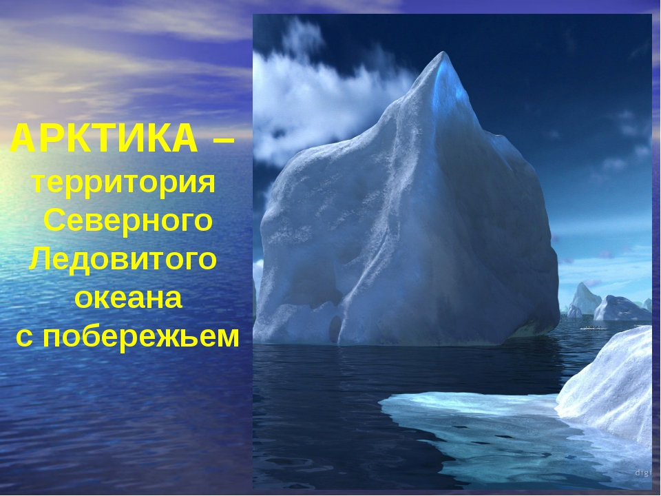 АРКТИКА – территория Северного Ледовитого океана с побережьем