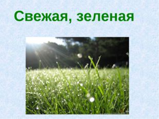 Свежая, зеленая