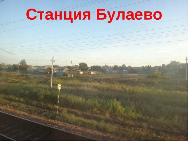Станция Булаево