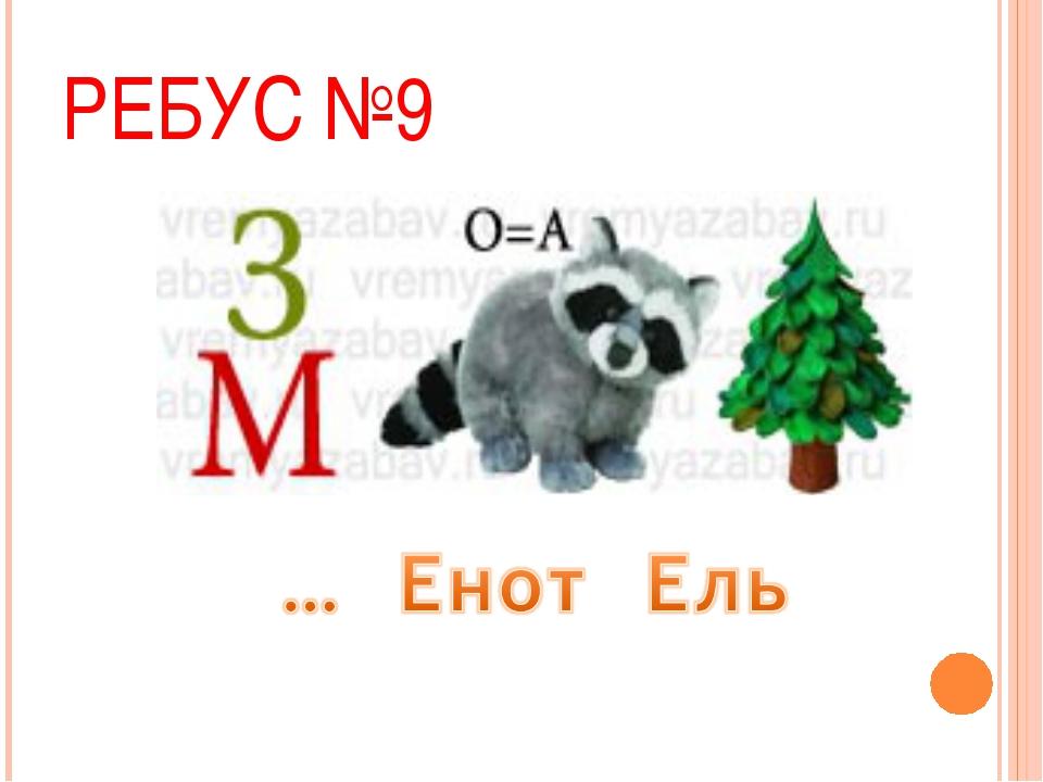 РЕБУС №9