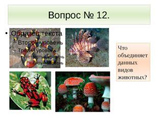 Вопрос № 12. Что объединяет данных видов животных?