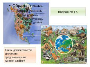 Вопрос № 17. Какие доказательства эволюции представлены на данном слайде?