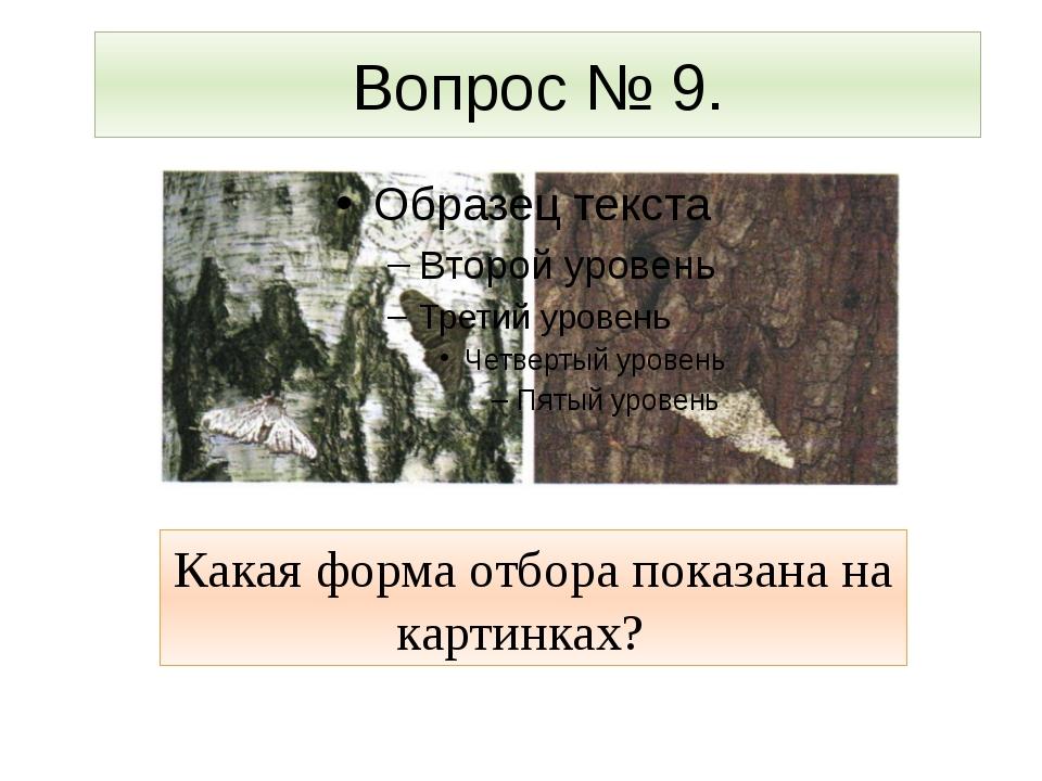 Вопрос № 9. Какая форма отбора показана на картинках?