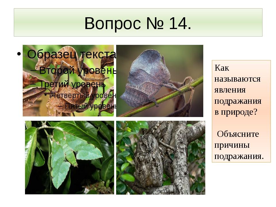 Вопрос № 14. Как называются явления подражания в природе? Объясните причины п...