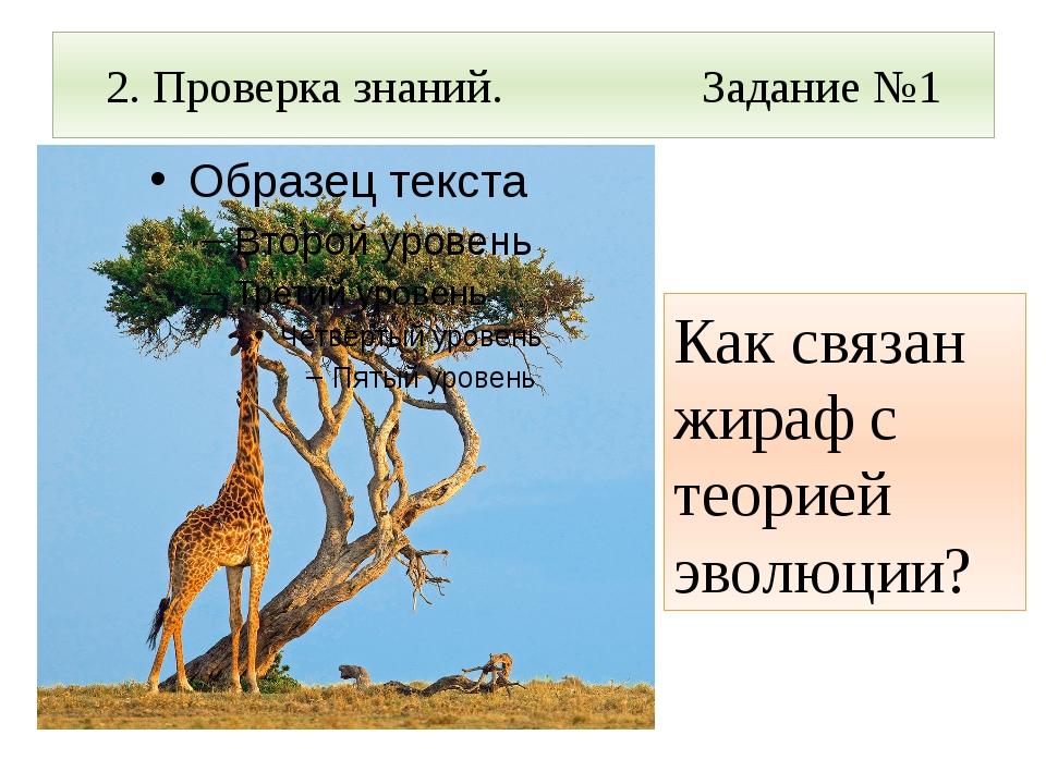 2. Проверка знаний. Задание №1 Как связан жираф с теорией эволюции?