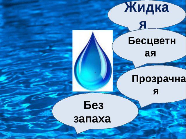 Жидкая Бесцветная Прозрачная Без запаха
