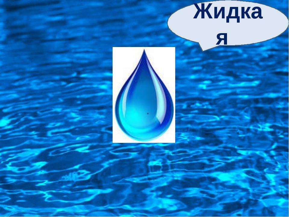 Жидкая