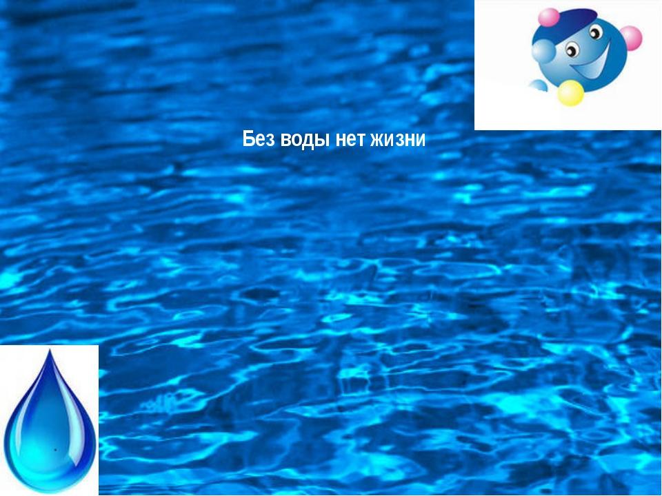 Без воды нет жизни