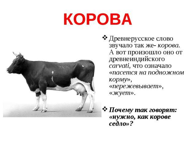 КОРОВА Древнерусское слово звучало так же- корова. А вот произошло оно от дре...