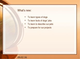 What's new: To learn types of dogs To learn facts of dogs' jobs To learn to d