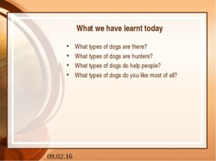 What we have learnt today What types of dogs are there? What types of dogs ar