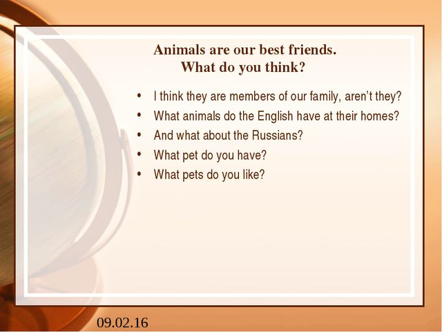 Animals are our best friends. What do you think? I think they are members of...