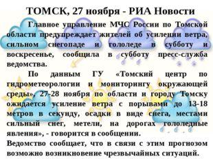 ТОМСК, 27 ноября - РИА Новости Главное управление МЧС России по Томской обла