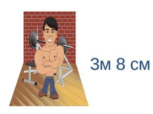 3м 8 см