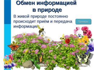 Обмен информацией в природе В живой природе постоянно происходит приём и пере