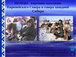 НЕНЦЫ - коренное население Европейского Севера и севера западной Сибири Ненцы