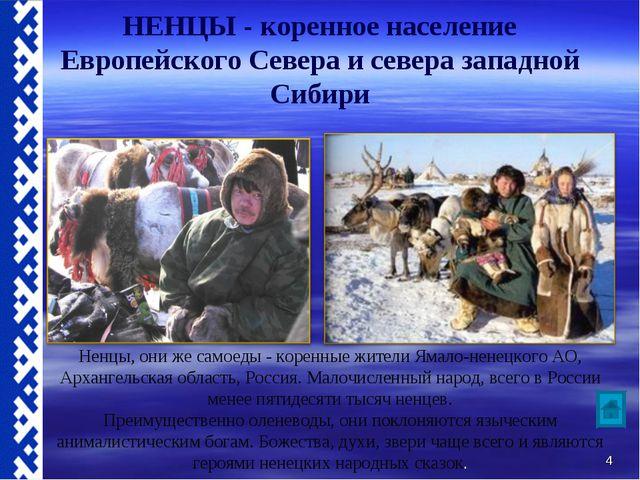 НЕНЦЫ - коренное население Европейского Севера и севера западной Сибири Ненцы...