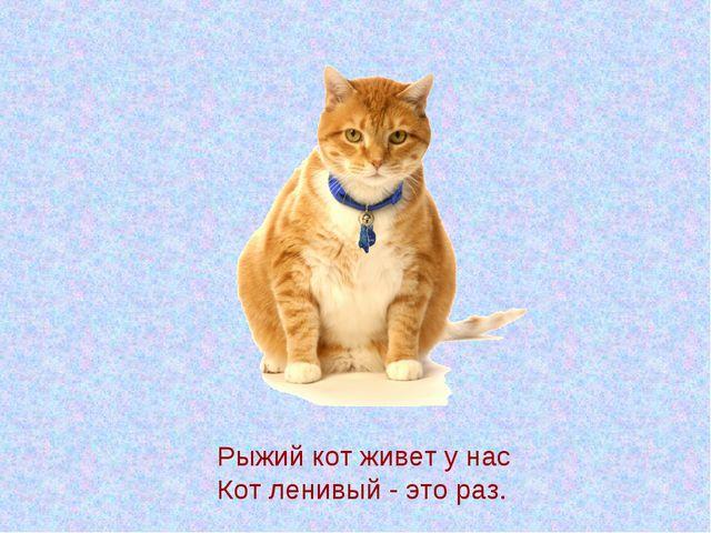 Рыжий кот живет у нас Кот ленивый - это раз.