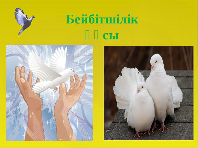 Бейбітшілік құсы