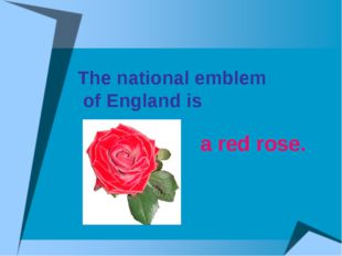 The national emblem of England is a red rose.