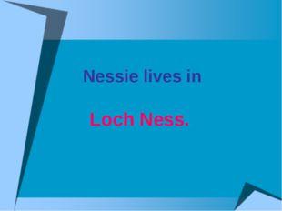 Nessie lives in Loch Ness.