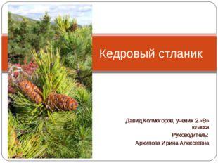 Давид Колмогоров, ученик 2 «В» класса Руководитель: Архипова Ирина Алексеевна