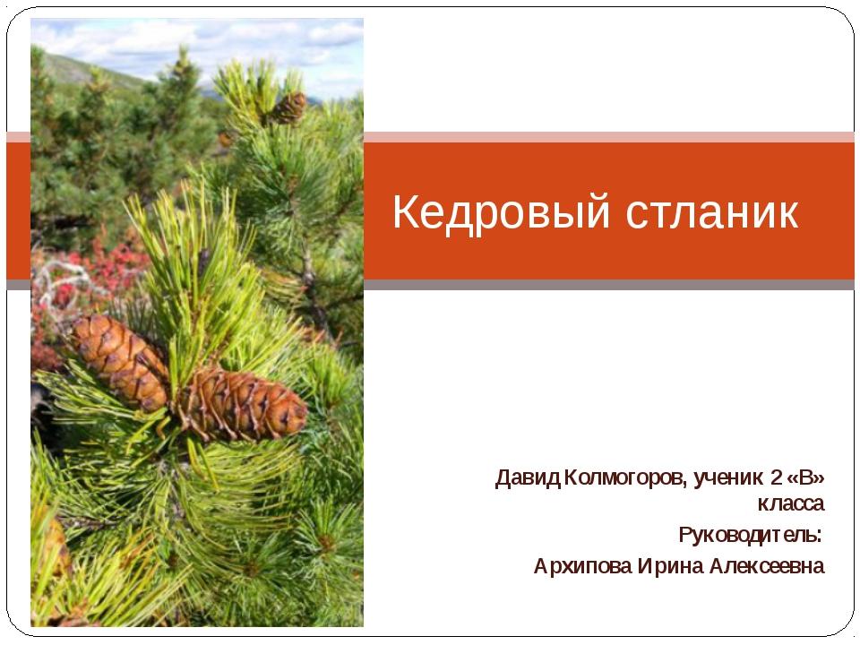 Давид Колмогоров, ученик 2 «В» класса Руководитель: Архипова Ирина Алексеевна...