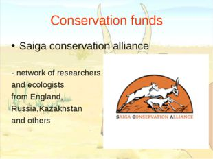 Conservation funds Saiga conservation alliance - network of researchers and e
