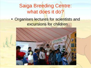 Saiga Breeding Centre: what does it do? Organises lectures for scientists and