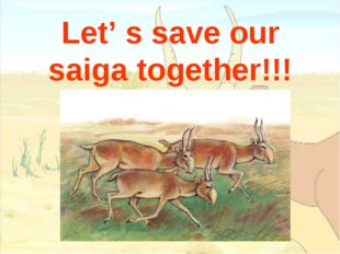 Let' s save our saiga together!!!