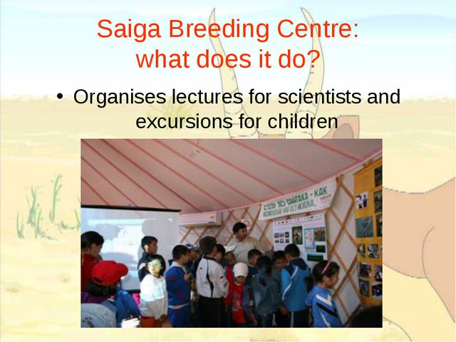 Saiga Breeding Centre: what does it do? Organises lectures for scientists and...