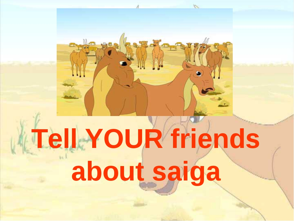 Tell YOUR friends about saiga