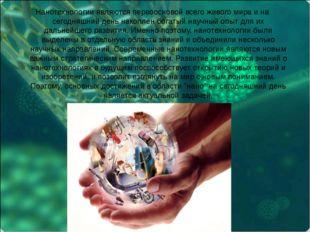 Нанотехнологии являются первоосновой всего живого мира и на сегодняшний день