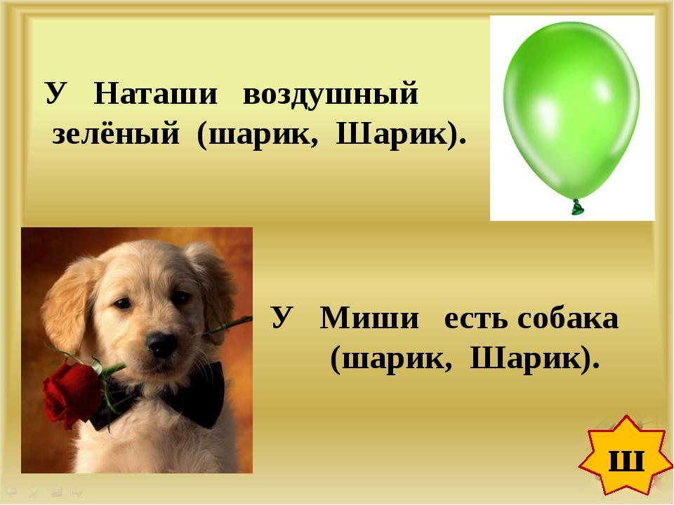 ш У Наташи воздушный зелёный (шарик, Шарик). У Миши есть собака (шарик, Шарик).