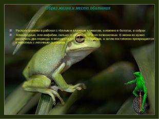 Распространены в районах с тёплым и влажным климатом, а именно в болотах, в о