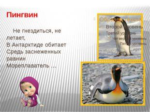 Пингвин Не гнездиться, не летает, В Антарктиде обитает Средь заснеженных равн