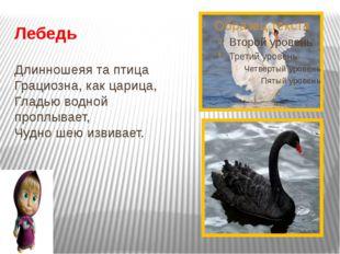 Лебедь Длинношеяя та птица Грациозна, как царица, Гладью водной проплывает,