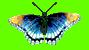 hello_html_m1e619d9d.png