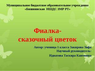 Автор: ученица 1 класса Закирова Зифа Научный руководитель: Идиатова Таскира