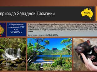 Дождевые леса Гондваны (Восточного побережья) Этот природный памятник, включа