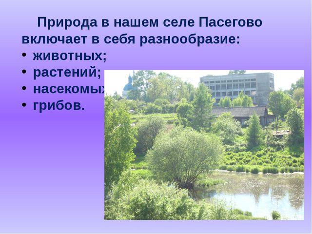 Природа в нашем селе Пасегово включает в себя разнообразие: животных; растен...
