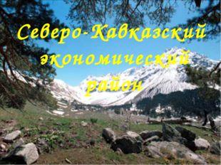 Северо-Кавказский экономический район