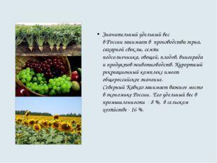 Значительный удельный вес в России занимает в производства зерна, сахарной с