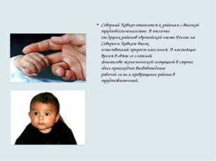 Северный Кавказ относится к районам с высокой трудообеспеченностью. В отличие