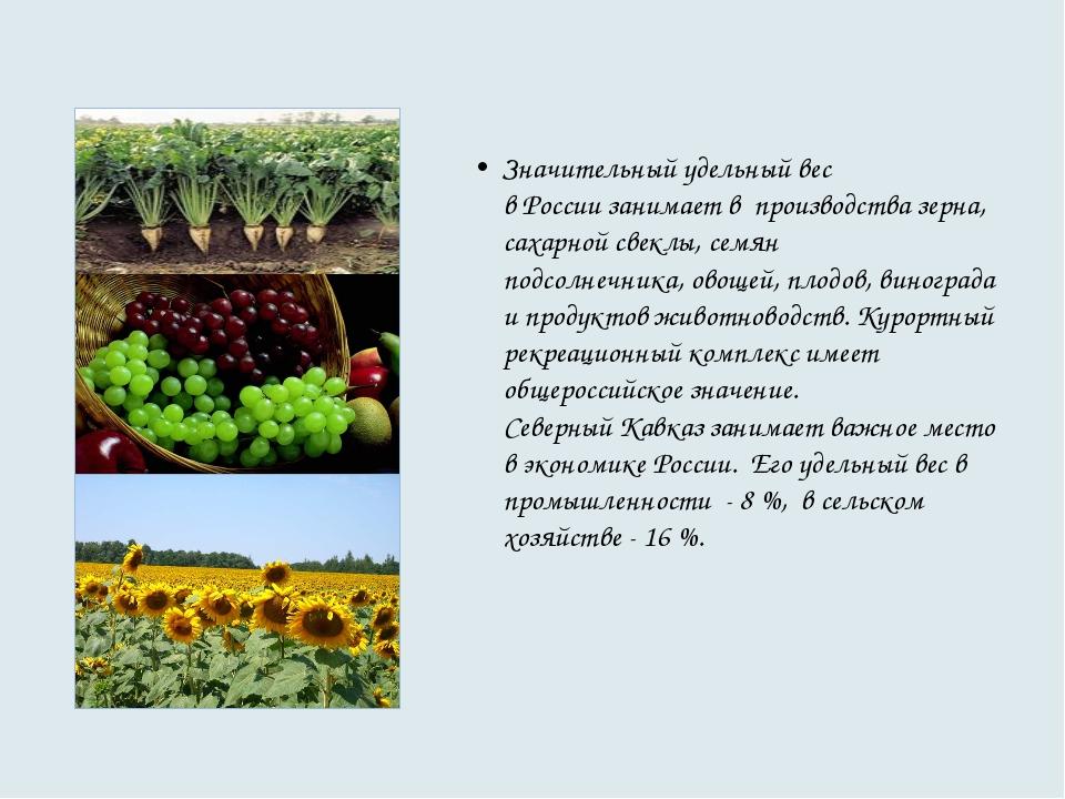 Значительный удельный вес в России занимает в производства зерна, сахарной с...