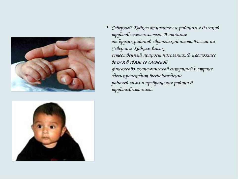 Северный Кавказ относится к районам с высокой трудообеспеченностью. В отличие...