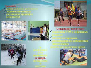 . Содержание комплекса: нормативы ГТО и спортивных разрядов система тестирова