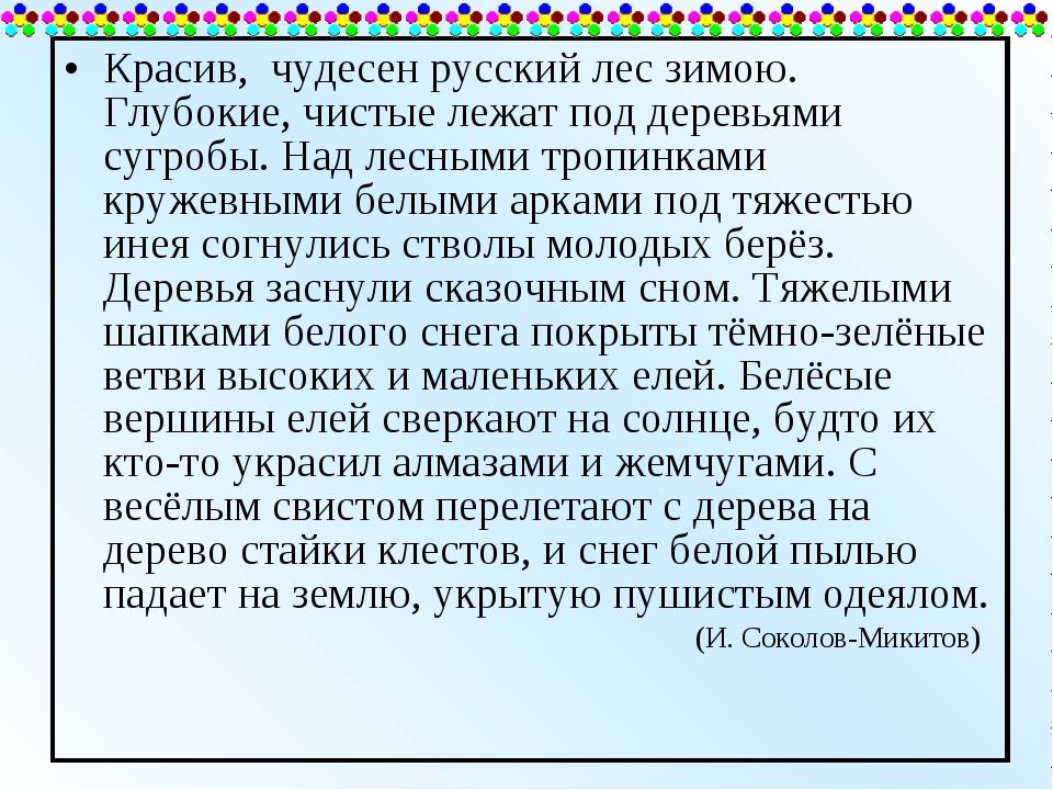 Красив, чудесен русский лес зимою. Глубокие, чистые лежат под деревьями сугро...