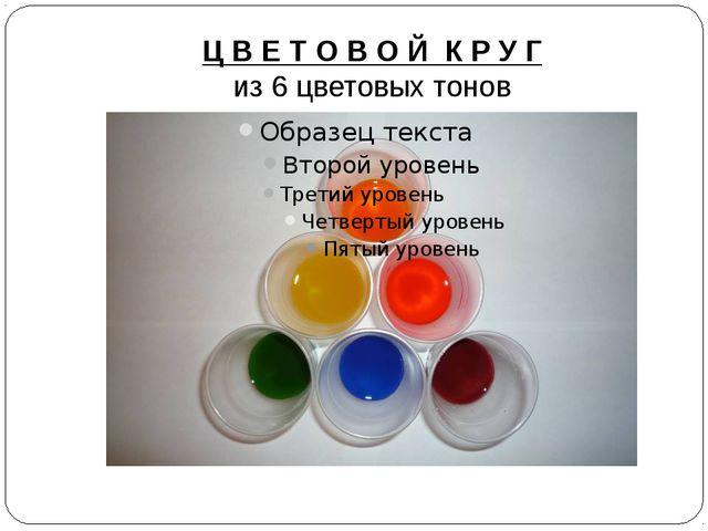 Ц В Е Т О В О Й К Р У Г из 6 цветовых тонов