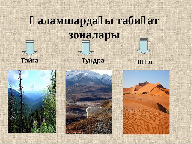 Ғаламшардағы табиғат зоналары Тайга Тундра Шөл